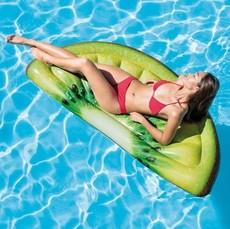 kiwi-zelena-do-vody